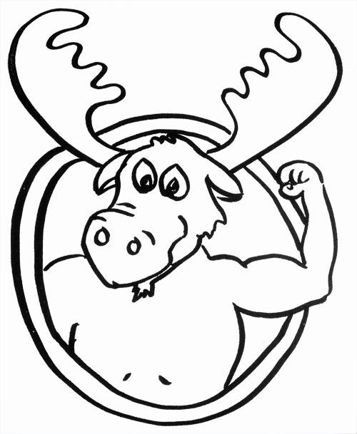 strong-like-moose-web